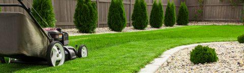 Obtenha o seu jardim de sonho!